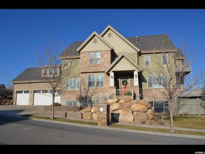 Eagle Mountain Single Family Home For Sale: 3847 E Spy Glass Dr