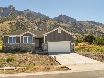 Willard Single Family Home For Sale: 779 S 225 E