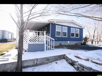Grantsville Single Family Home For Sale: 974 E Main St S