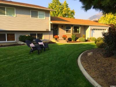 Orem Single Family Home For Sale: 371 E 230 S
