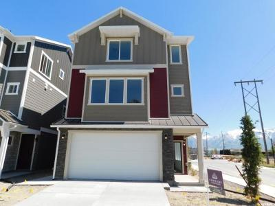 Midvale Single Family Home For Sale: 7569 S Grahm Ln W #306