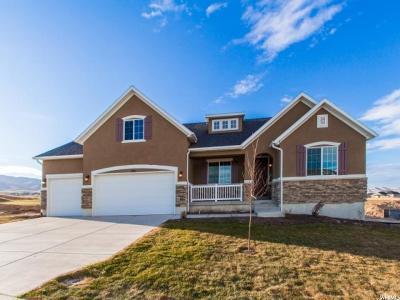 Saratoga Springs Single Family Home For Sale: 236 E Ironwood Dr S #9