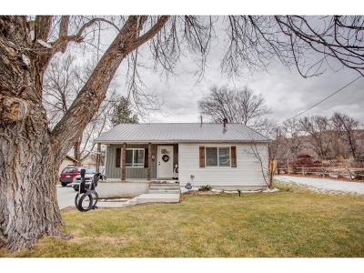 Alpine Single Family Home For Sale: 703 N Main St