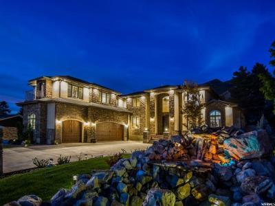 Holladay Single Family Home For Sale: 3595 E Jupiter Rd S