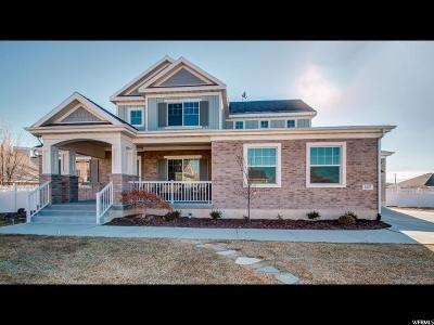 Draper Single Family Home For Sale: 12057 S Nelda Ct