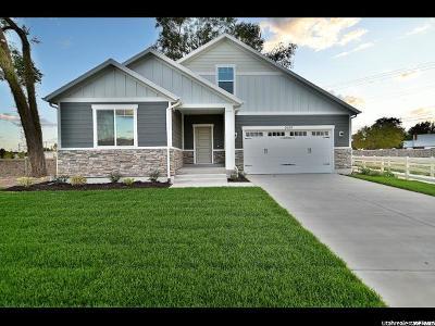 West Jordan Single Family Home For Sale: 2689 W Closner Cir S