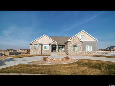 Grantsville Single Family Home For Sale: 627 Surrey Ct