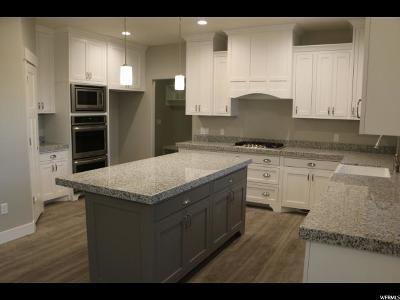 Salem Single Family Home For Sale: 972 S 100 E #31