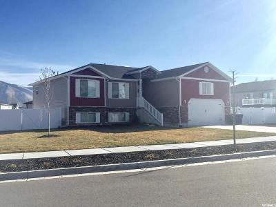 Nibley Single Family Home For Sale: 2866 S 1150 W