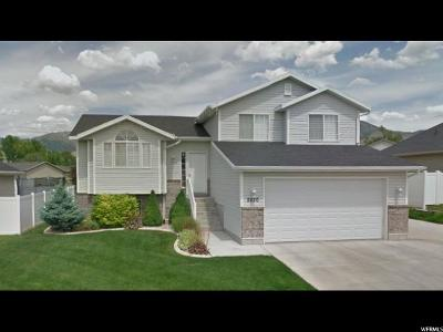 North Logan Single Family Home For Sale: 2630 N Meadow Ln