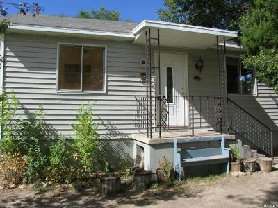 Carbon County Single Family Home For Sale: 296 Park Ave