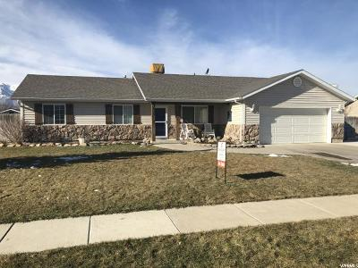 Nibley Single Family Home For Sale: 3079 S 1600 W