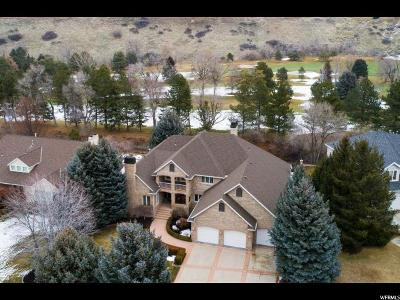 Sandy Single Family Home For Sale: 8449 S Robidoux Rd