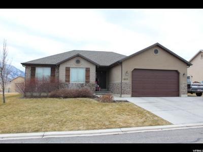 Santaquin Single Family Home For Sale: 653 W Stonebrook Ln S