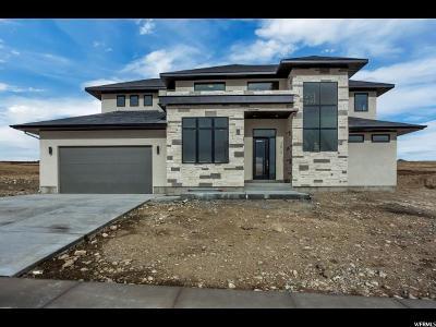 Eagle Mountain Single Family Home For Sale: 2819 E Lakeside Dr