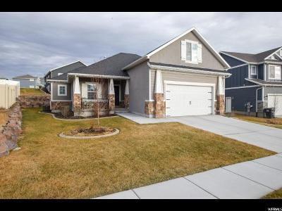 Eagle Mountain Single Family Home For Sale: 7862 N Sagebrush Ln
