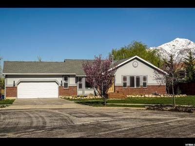 Ogden Single Family Home For Sale: 837 N Eccles Ave