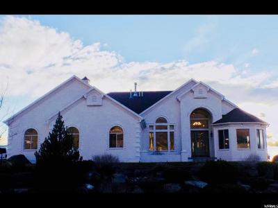 Alpine Single Family Home For Sale: 650 Healey Blvd