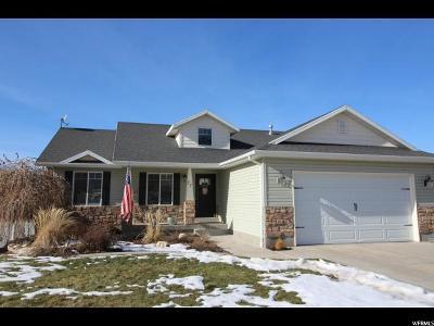 Smithfield Single Family Home For Sale: 77 S 1050 E