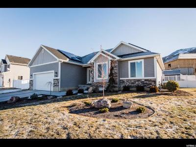 Benson Single Family Home For Sale: 836 S 500 E