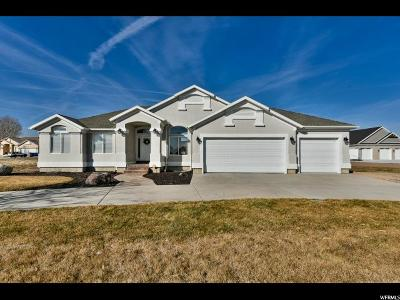 Riverton Single Family Home For Sale: 3358 W 13370 S