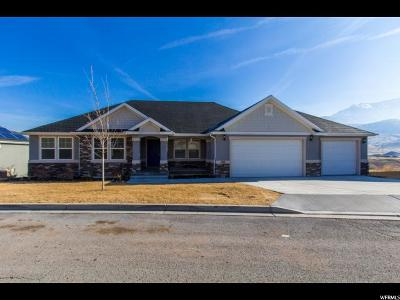 Santaquin Single Family Home For Sale: 1341 E Sageberry Dr