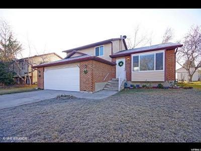 Sandy Single Family Home For Sale: 790 E Drystone