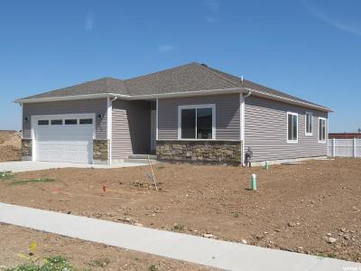 Hyrum Single Family Home For Sale: 1249 E 330 S