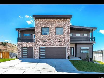 Lehi Single Family Home For Sale: 1465 W Revello Ct S