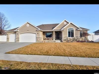 Riverton Single Family Home For Sale: 11961 S Hersey Ct W