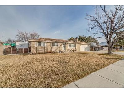 South Jordan Single Family Home For Sale: 1166 W 10610 S