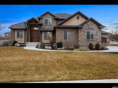 South Jordan Single Family Home For Sale: 11024 S Amini Way