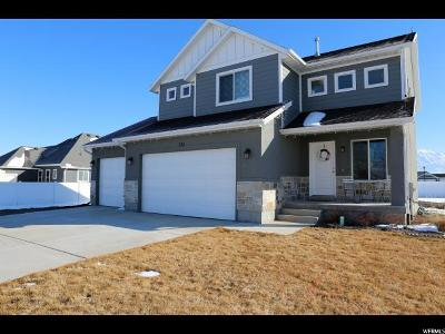Lehi Single Family Home For Sale: 731 S 2300 W