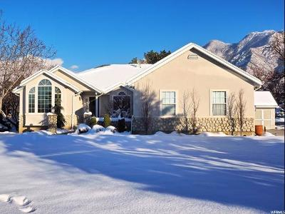 Sandy Single Family Home For Sale: 10763 S 2000 E