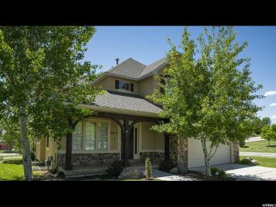 Highland Single Family Home For Sale: 6033 W 11830 N
