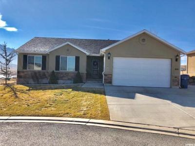 Santaquin Single Family Home For Sale: 641 W Stonebrook Ln S