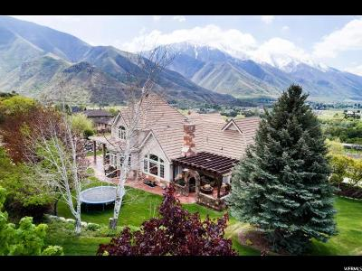 Springville Single Family Home For Sale: 2621 E Stonebury Loop Rd