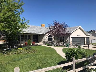 Draper Single Family Home For Sale: 12712 S 300 E