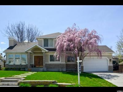 Sandy Single Family Home For Sale: 104 E Clear Creek Dr