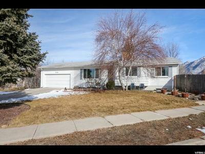 Sandy Single Family Home For Sale: 11199 S Lynford Dr