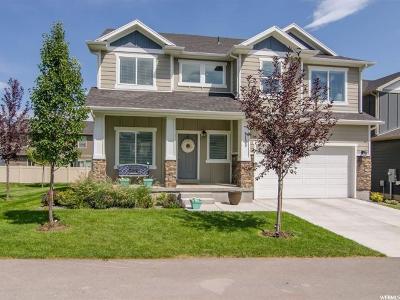 Eagle Mountain Single Family Home For Sale: 5133 E High Noon Ave