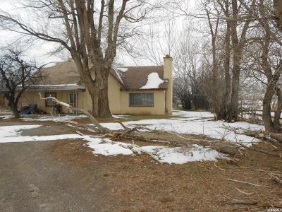 Spanish Fork Single Family Home For Sale: 3591 W 7900 S