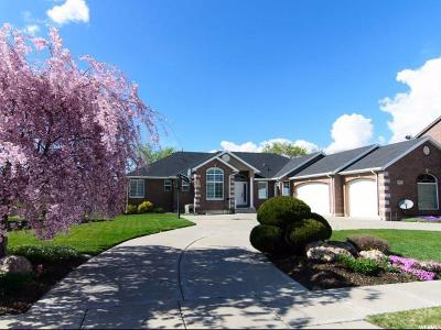 Kaysville Single Family Home For Sale: 732 W Old Mill Ln N