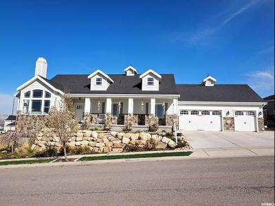 Lehi Single Family Home For Sale: 1918 W Little Ridge Way N