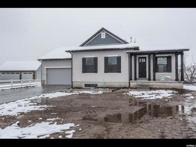 Farmington Single Family Home For Sale: 378 W Clark Cir S #105