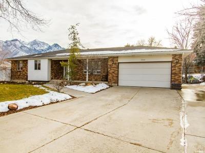 Sandy Single Family Home For Sale: 2046 E Leonard Cir