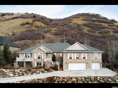 Ogden Single Family Home For Sale: 5184 S Mile High Cir