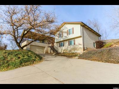 Farmington Single Family Home For Sale: 958 N Main St W