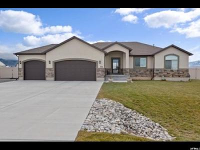 Grantsville Single Family Home For Sale: 756 E Frontier Rd S #206