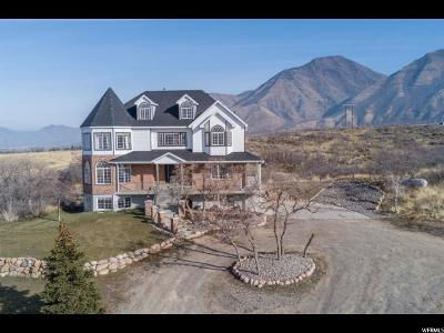 Salem Single Family Home For Sale: 10929 S Loafer Canyon Rd